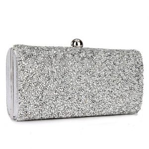 shimmering-winter-purse